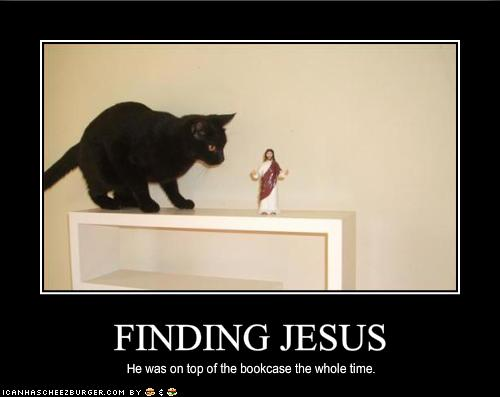 Motivacionales parte 2 funny pictures your cat has found jesus